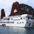 dragon cruise junk