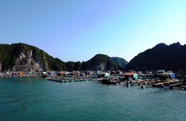 floating vilaage in halong bay
