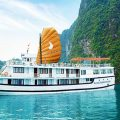 phoenix cruiser halong bay
