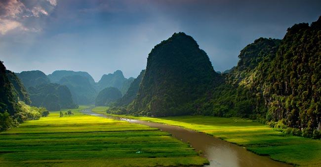 tam coc rice fields